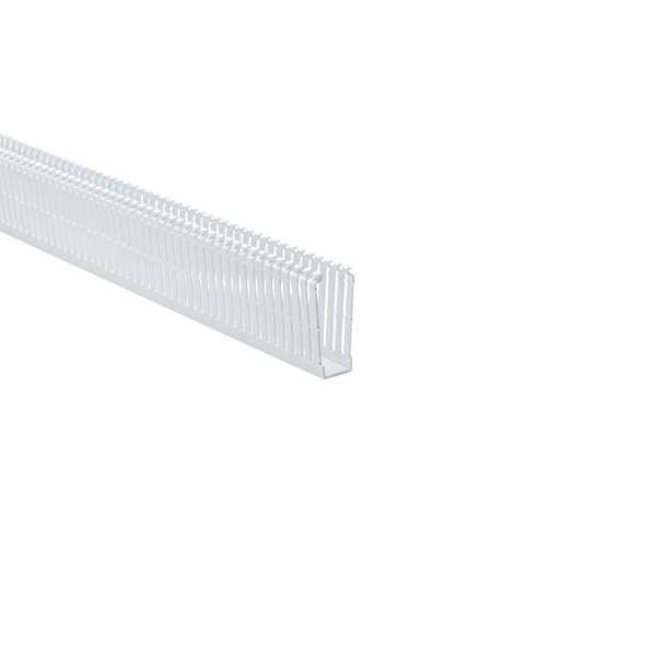 High Density Slotted Wall Wiring Duct, 1