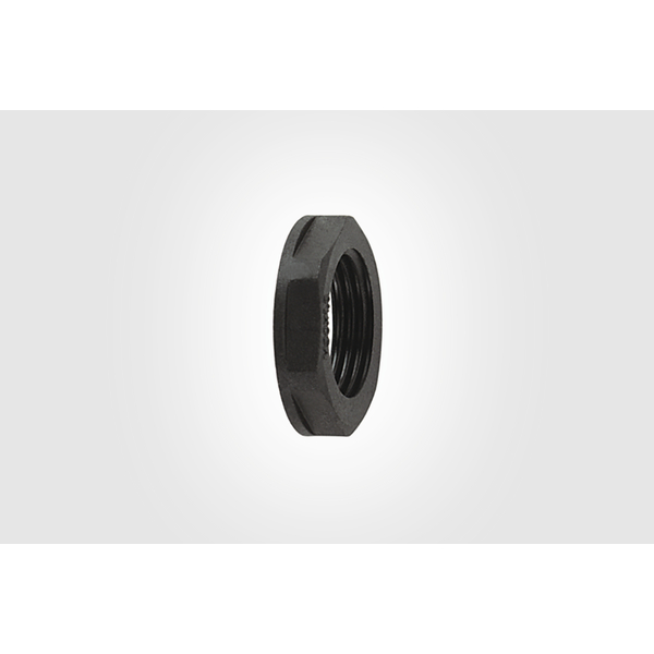 HelaGuard Non-Metallic Locknut, NPT Thread, 0.75